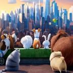 Pets (2016) – Reinrassige Animationsfilmzüchtung