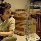 Gewinnt eine DVD oder Blu-ray von Wiener Dog!